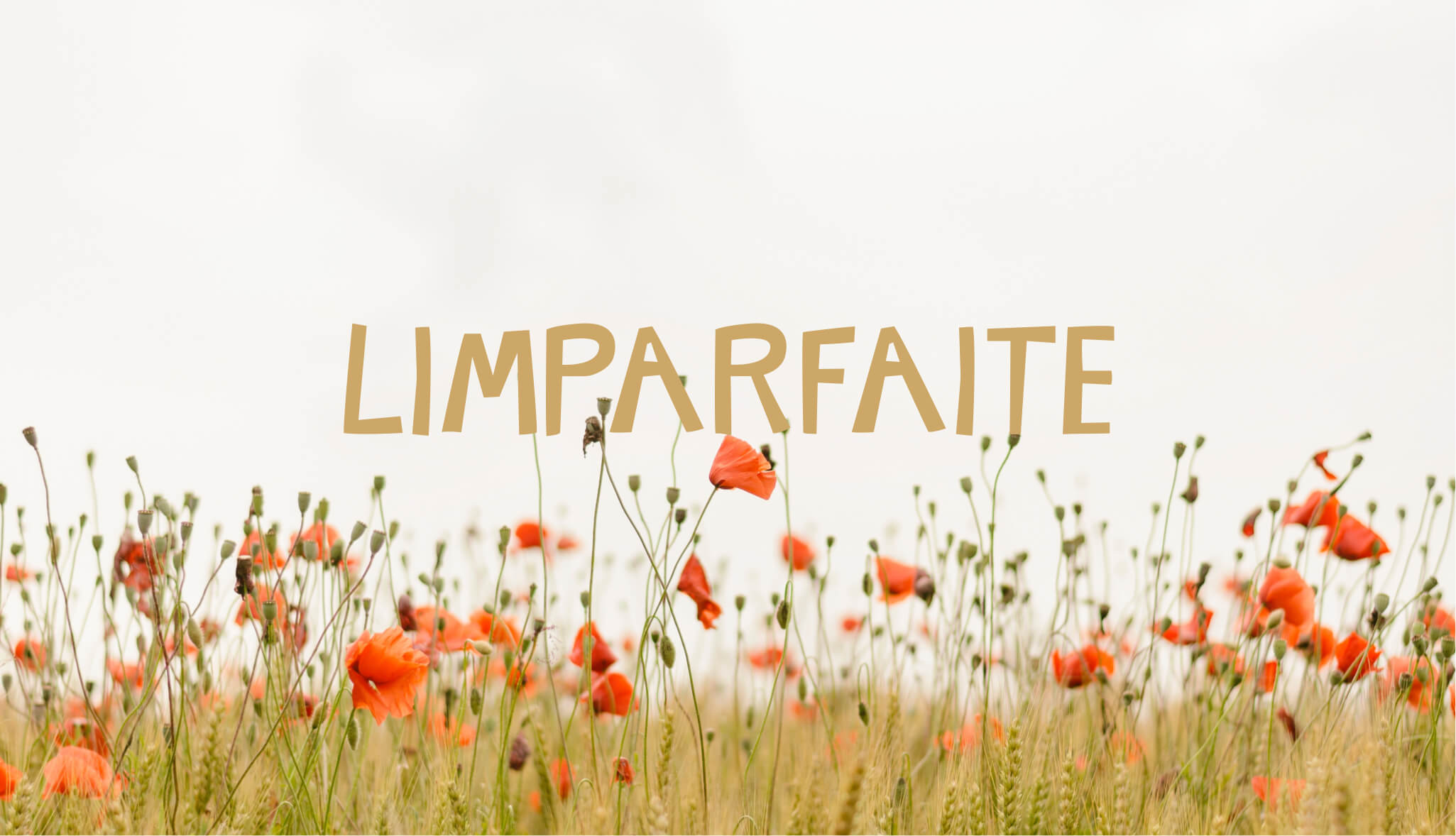 LIMPARFAITE-Typographie-Gratuite-Design-Antoine-Peltier-04