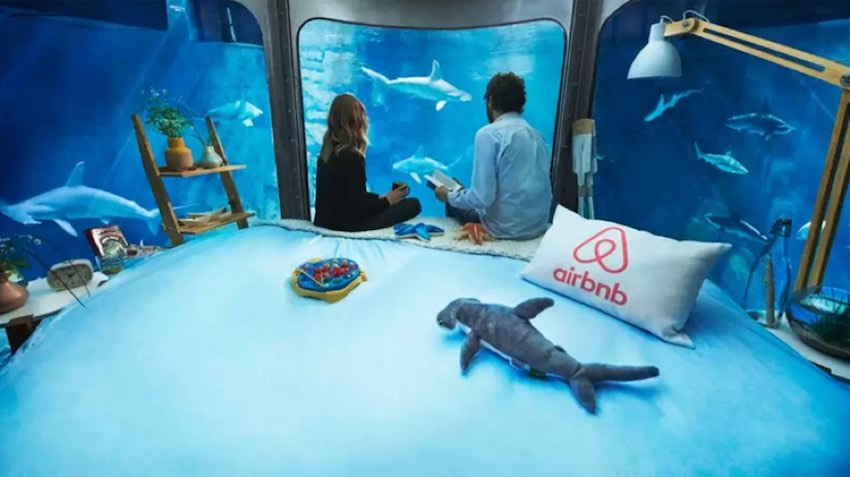 strategie marketing airbnb - aquarium requin paris - wnc-1