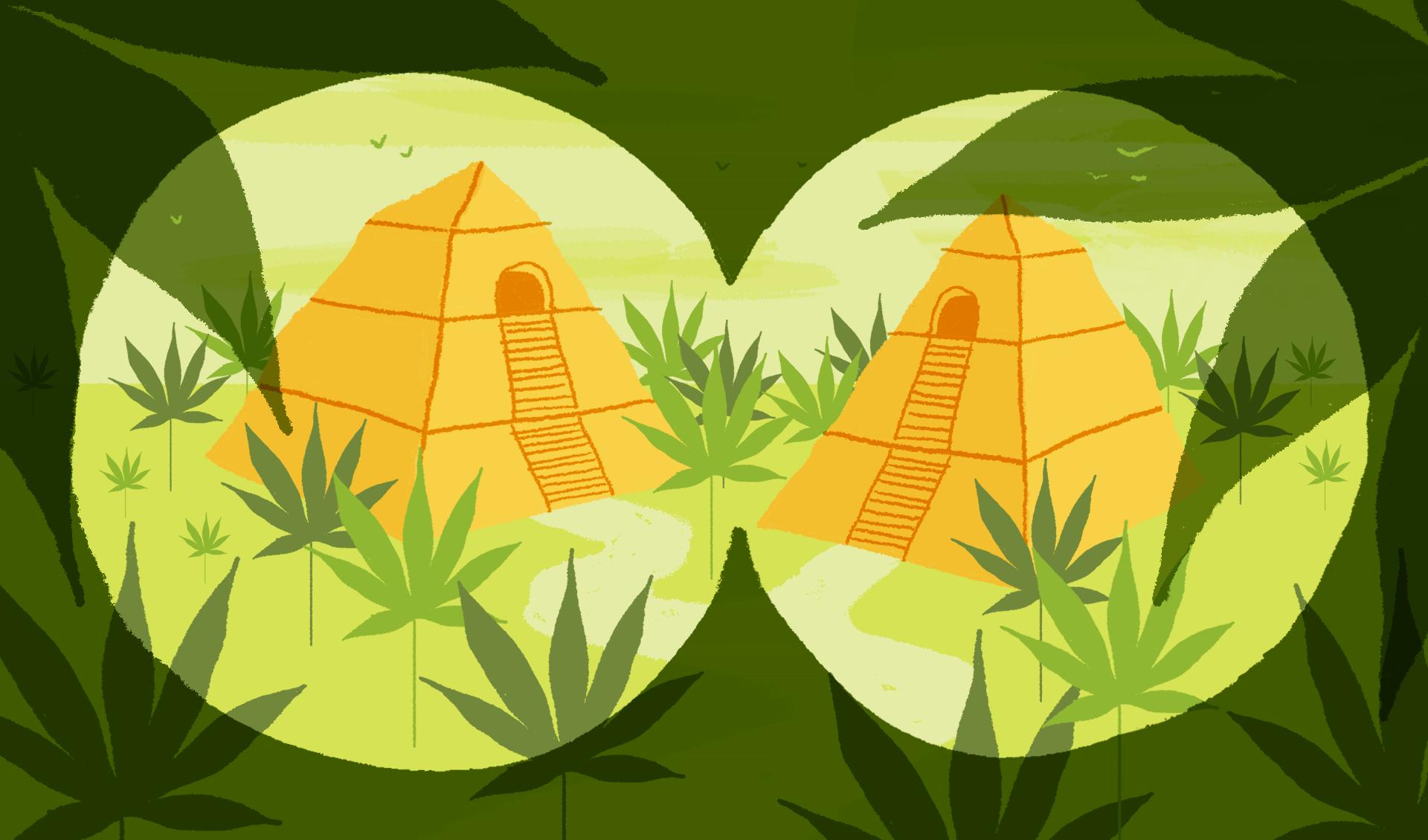 Marques-de-cannabis-weed-branding-illustration-antoine-peltier