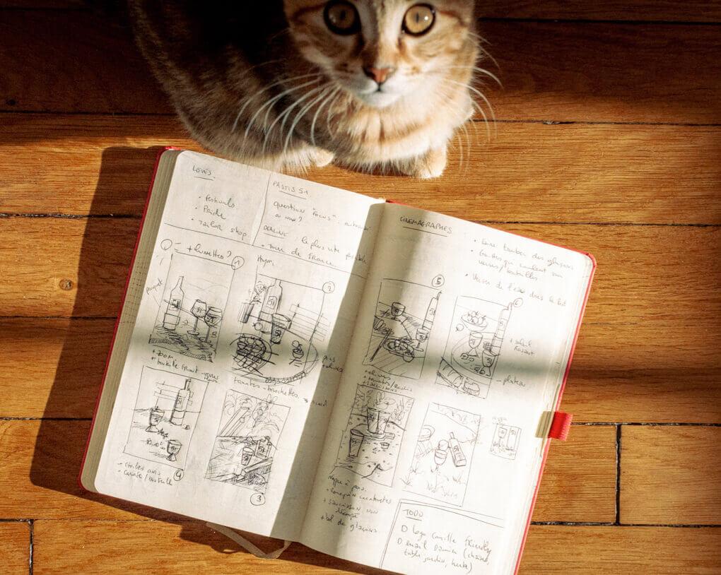 Onsen, le chat et coworkeur d'Antoine